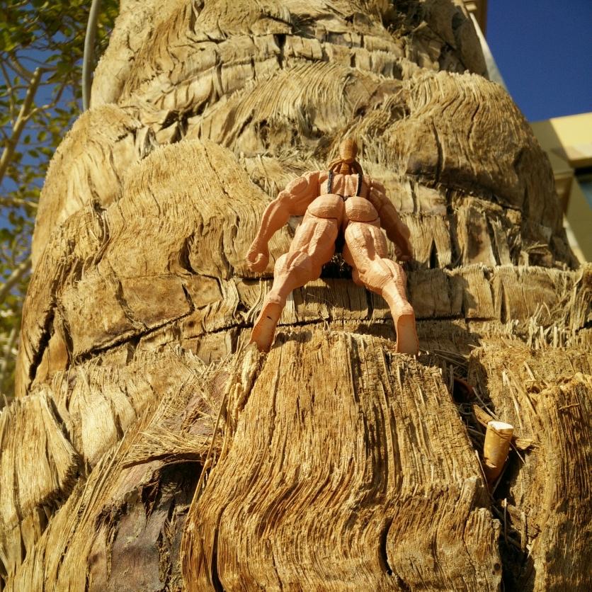 chesty climb (6)
